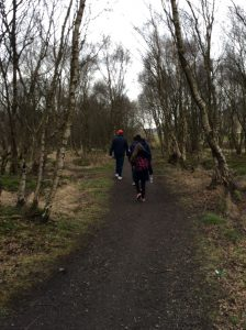 Students on Employability Sponsored Walk through woods