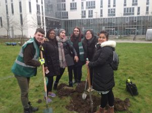 Orchard Project - Student volunteers