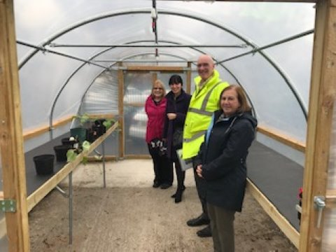 standing in the polytunnel