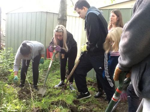 Students digging their mini pond