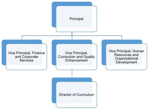 Organisational Structure Graph